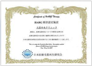 harg療法認定施設大宮中央クリニック